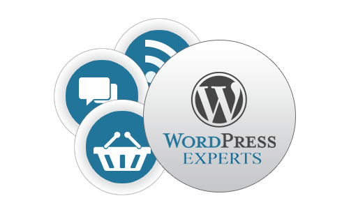 wordpress-customization-services
