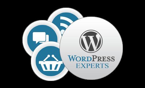 wordpress-customization-services